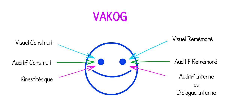 Déterminer Votre Profil D'apprentissage Avec Le Vakog serapportantà Le Canal Auditif