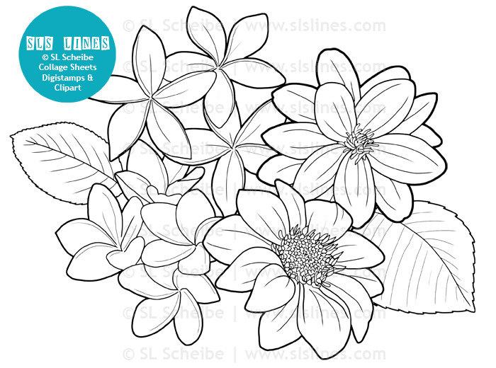 Digistamp Dahlias De Fleurs Coloriage Numérique Timbre | Etsy avec Coloriage Numérique