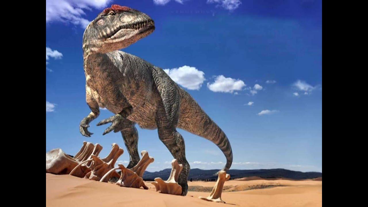Dinosaurio Google Sin Internet Clasico Juego - à Dinosaure Tyrex