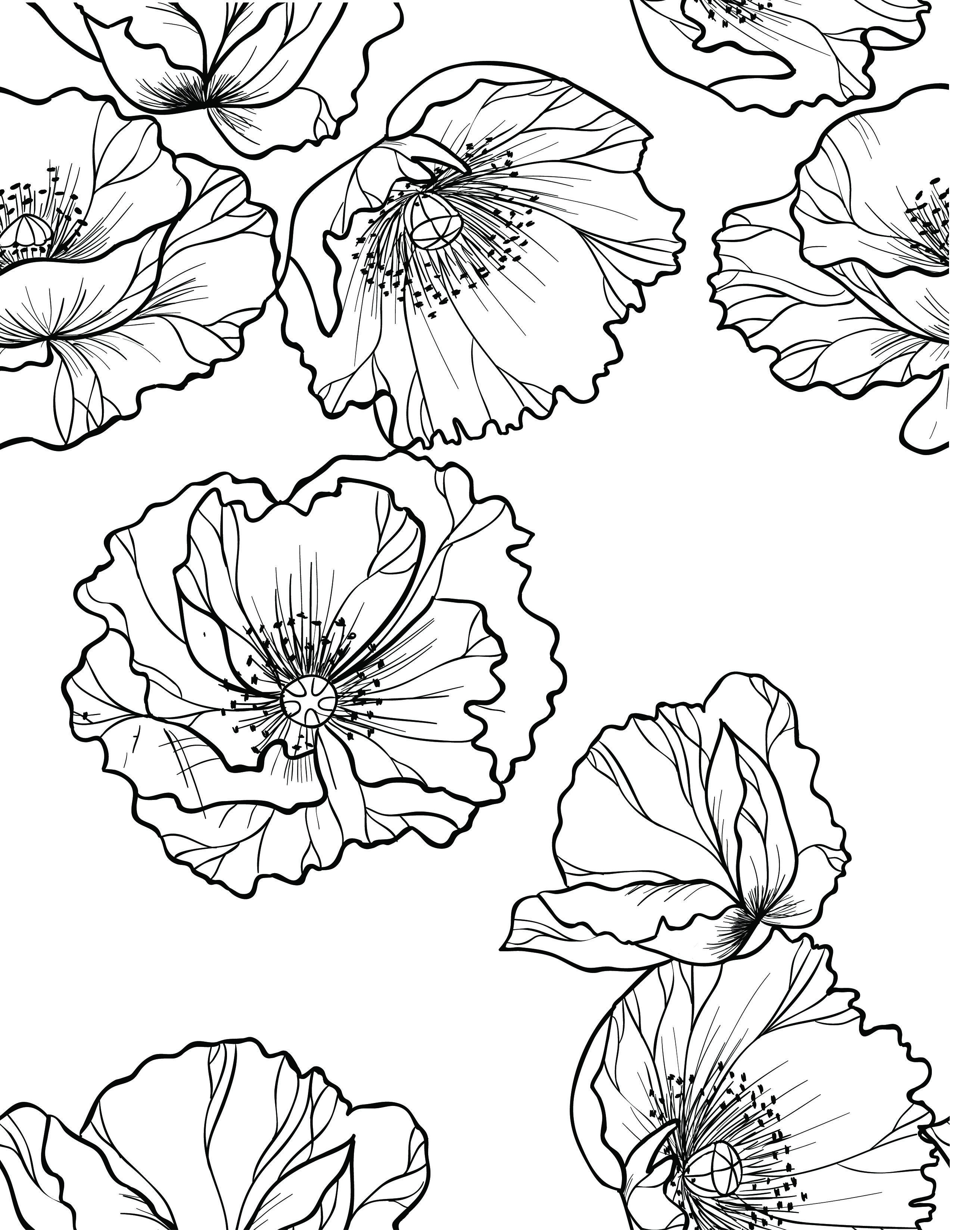 Épinglé Sur Coloriage Fleurs Et Plantes - Flowers And avec Carnet Coloriage Adulte