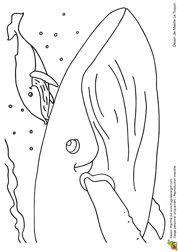 Épinglé Sur Coloriages Fête Des Mères Et Des Pères pour Comptine La Baleine Qui Tourne Qui Vire