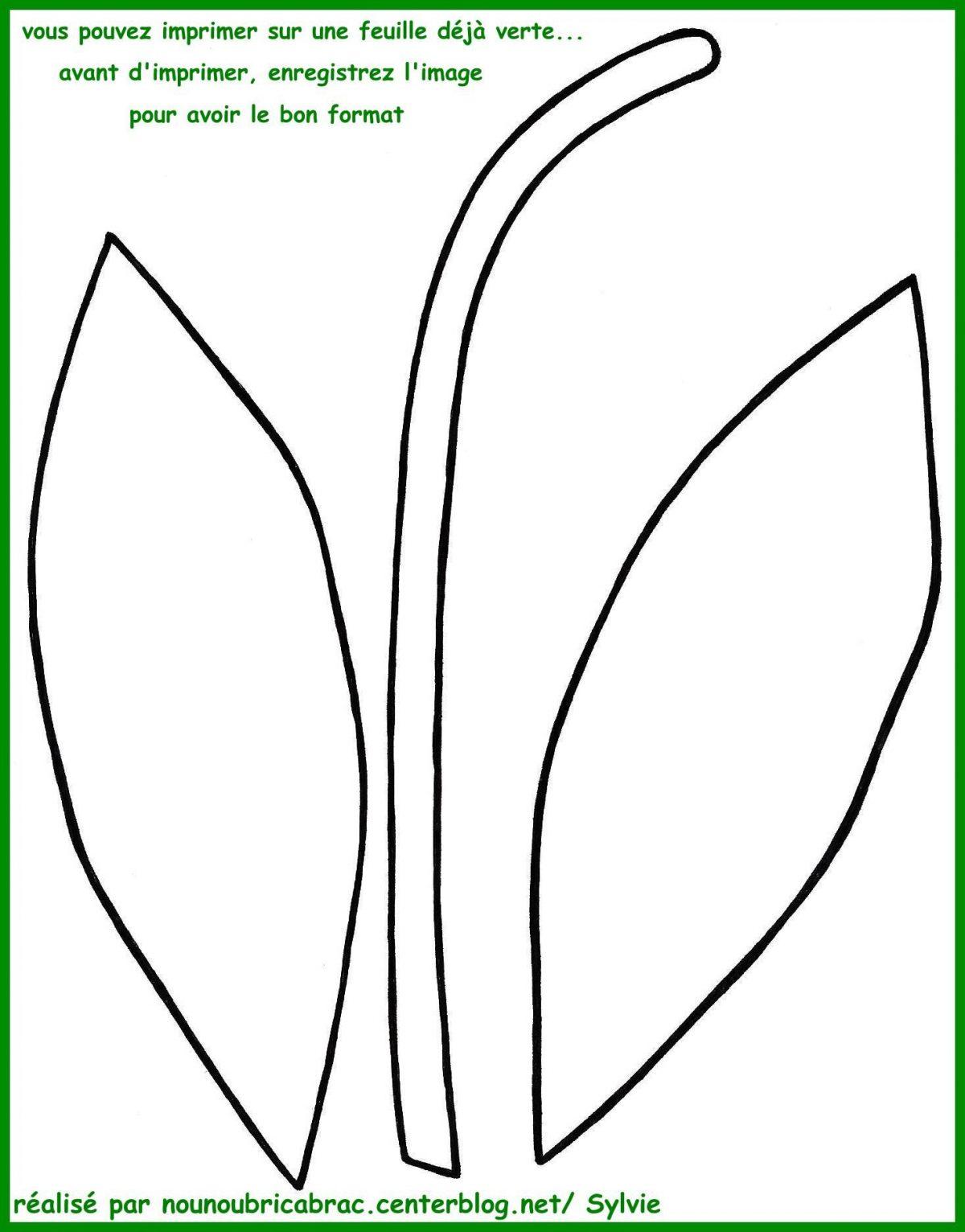 Branche Muguet Porte-Bonheur Par Azyrielle - Artherapie.ca ...