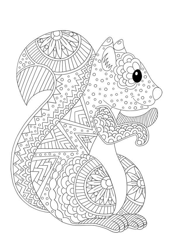 Färbung Von Tieren Zu Drucken: Das Eichhörnchen - Coloring intérieur Coloriage Écureuil À Imprimer