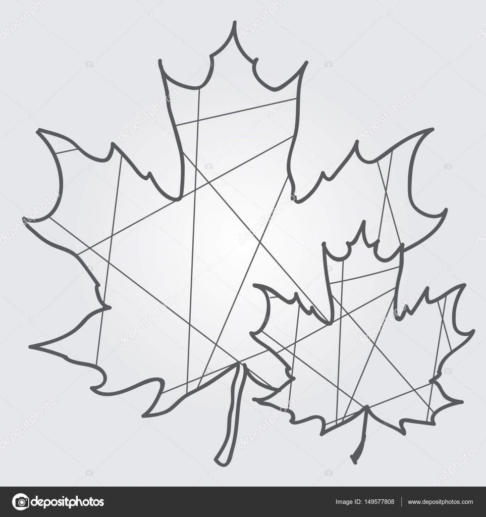 Feuilles D'érable Dessin Contour Polygonal — Image serapportantà Dessin Feuille Erable