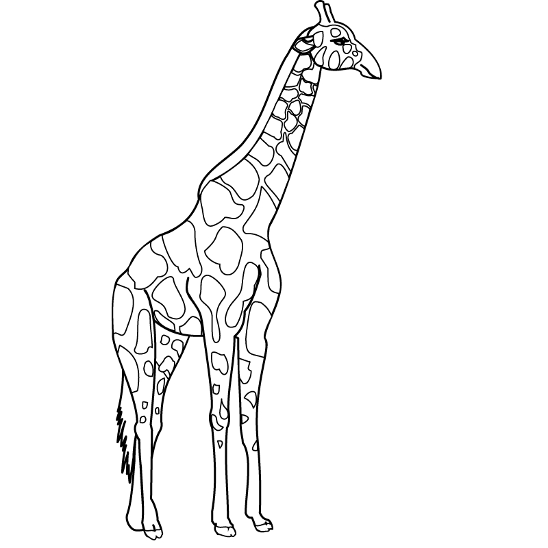 Giraffe Coloring Pages To Print | Fcp destiné Dessin Girafe Simple