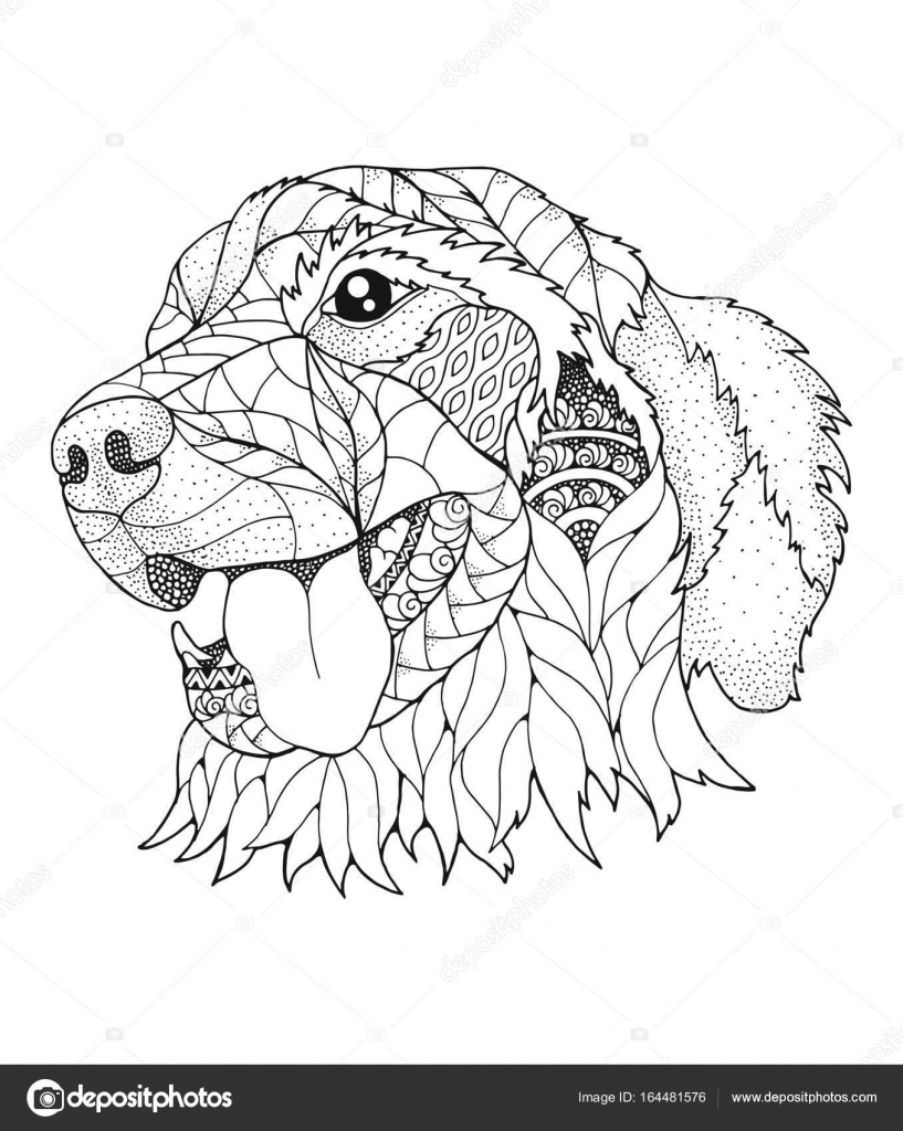 Golden Retriever Hond In Zentangle En Stipple Stijl avec Coloriage Labrador A Imprimer