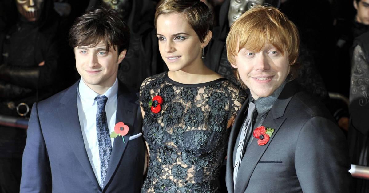 Harry Potter : Quels Sont Les Acteurs Qui Ont Rapporté Le intérieur Acteurs Et Personnages