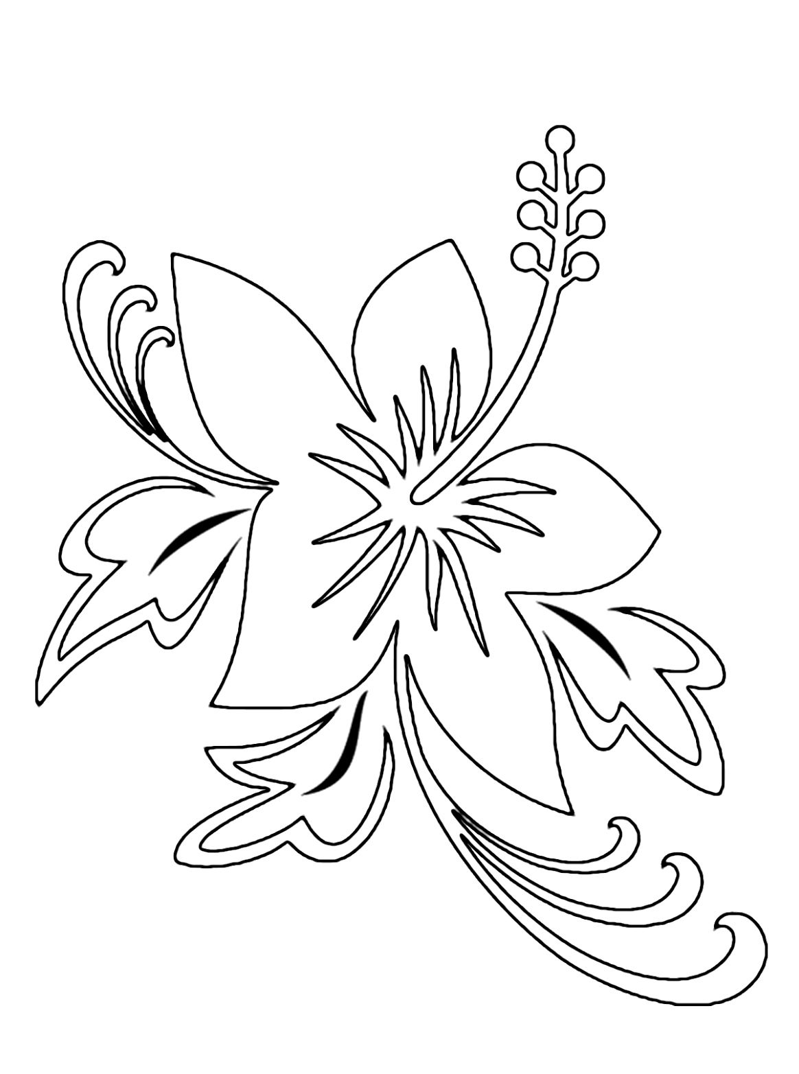 Hawaii Flower Outline Pin Hibiscus Coloring Pages 11170 Hd dedans Coloriage Hawaienne