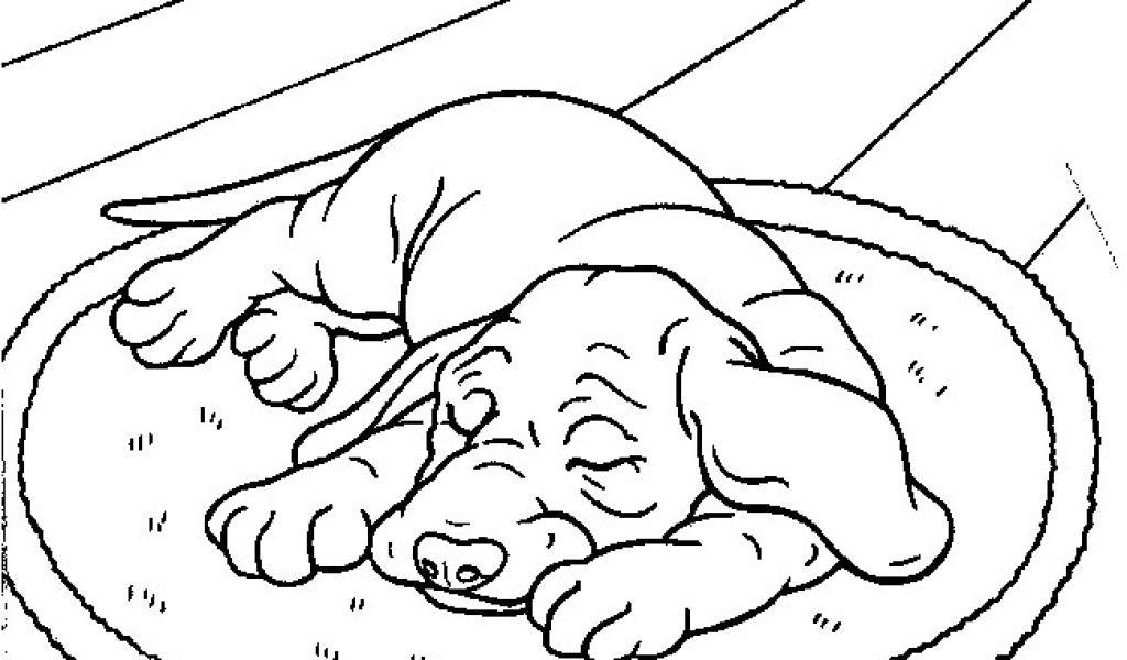 Hugo L Escargot Coloriage Gratuit A Imprimer Animaux Hugo concernant Dessin Hugo L Escargot