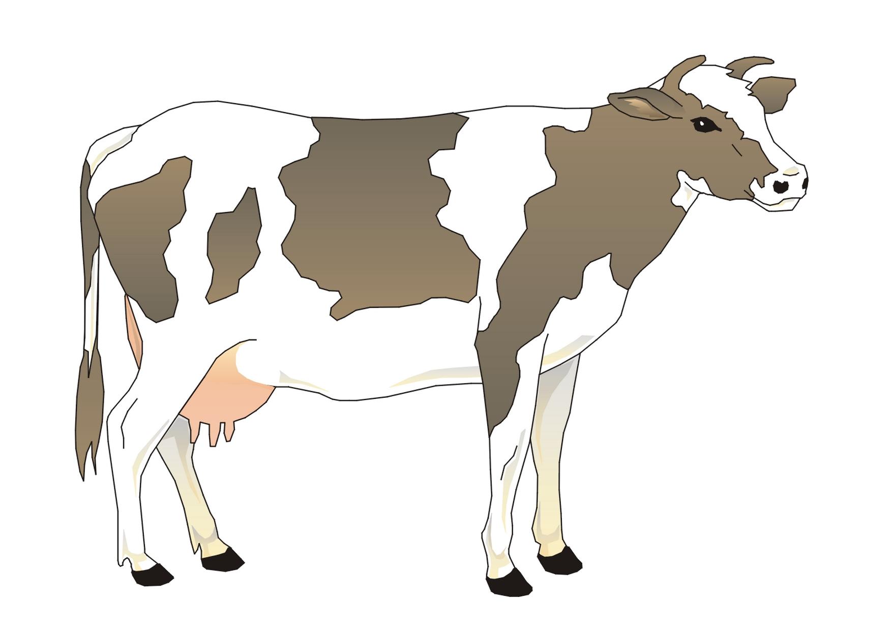 Illustration De Vache (4) intérieur Dessin D Une Vache