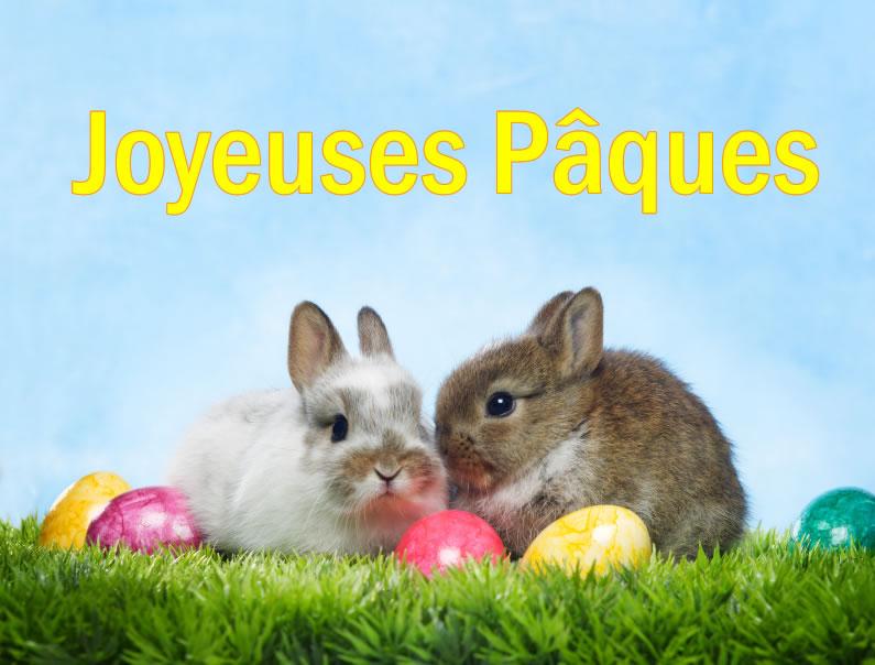 Image Lapin De Pâques - Belle Collection De Images Lapin concernant Origine Lapin De Pâques