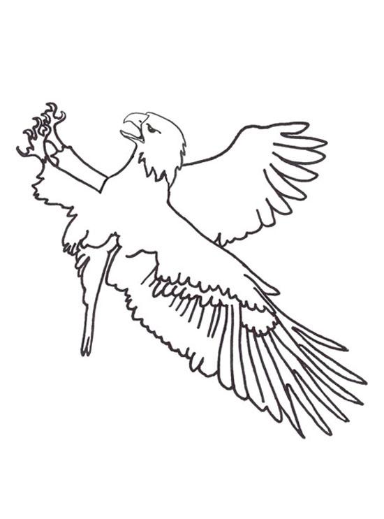 Imprime Le Dessin À Colorier D'Aigle encequiconcerne Coloriage Aigle A Imprimer Gratuit