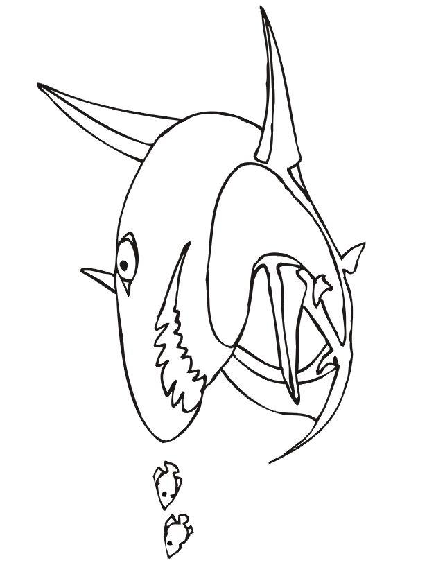 Imprime Le Dessin À Colorier De Requin concernant Requin A Colorier