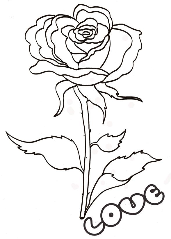 Imprimer Le Coloriage Love : La Rose À Longue Tige destiné Coloriage D Une Rose