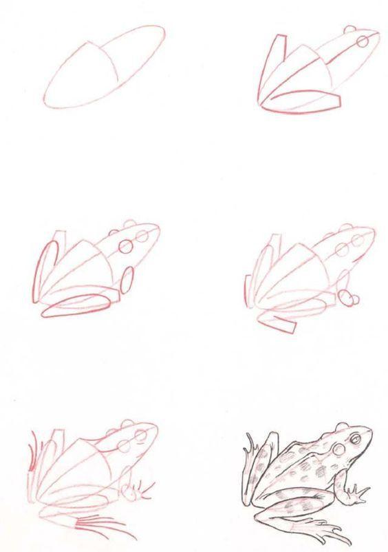 J'Apprends À Dessiner | Уроки Рисования avec Comment Dessiner Une Grenouille Facile