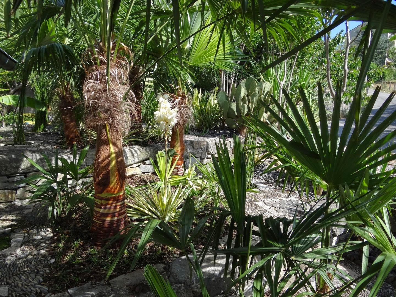 Jardin De Bésignoles: Premier Jour De L'Été serapportantà Jour De L Ete