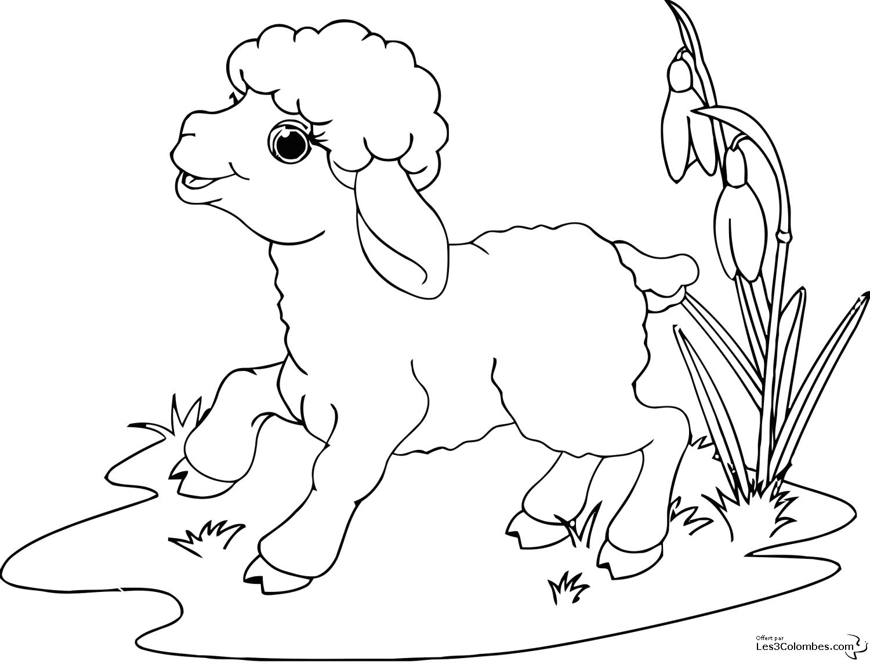 Jeux De Coloriage À Dessiner De Mouton Gratuit destiné Coloriage Mouton À Imprimer