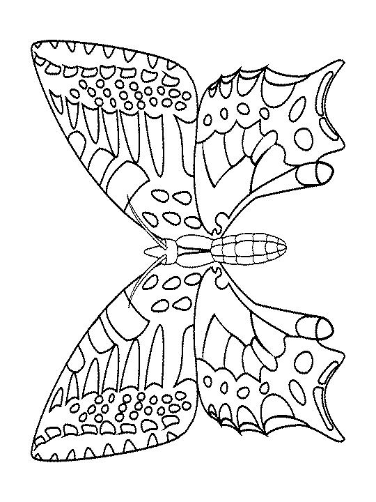 Joli Papillon encequiconcerne Coloriage Cactus A Imprimer Gratuit