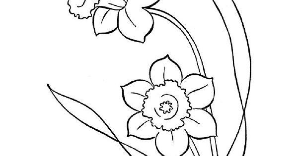 Jonquille Dessin Nouveau Images Coloriages De Fleurs à Jonquille Dessin