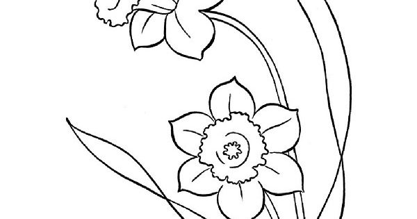 Jonquille Dessin Nouveau Images Coloriages De Fleurs tout Dessin Jonquille Fleur