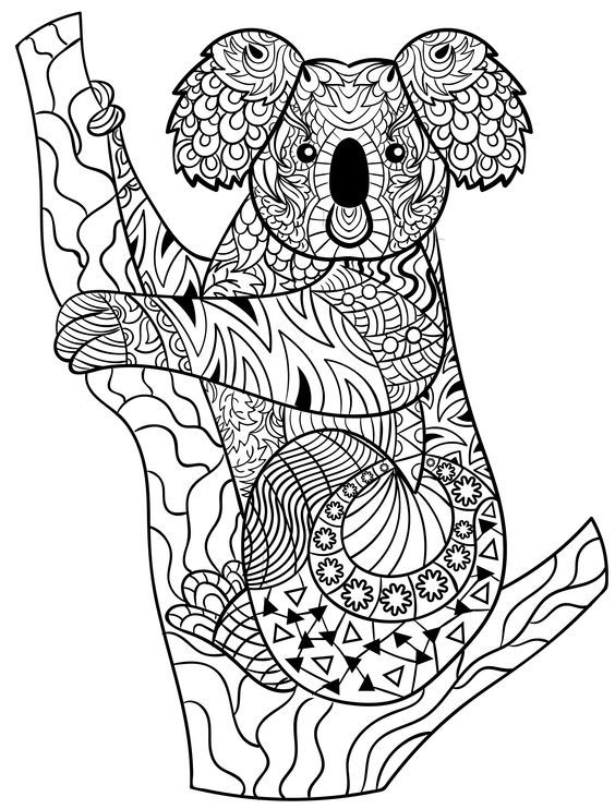 Koala Zentangle | Adult Coloring Pages, Love Coloring à Coloriage Koala A Imprimer