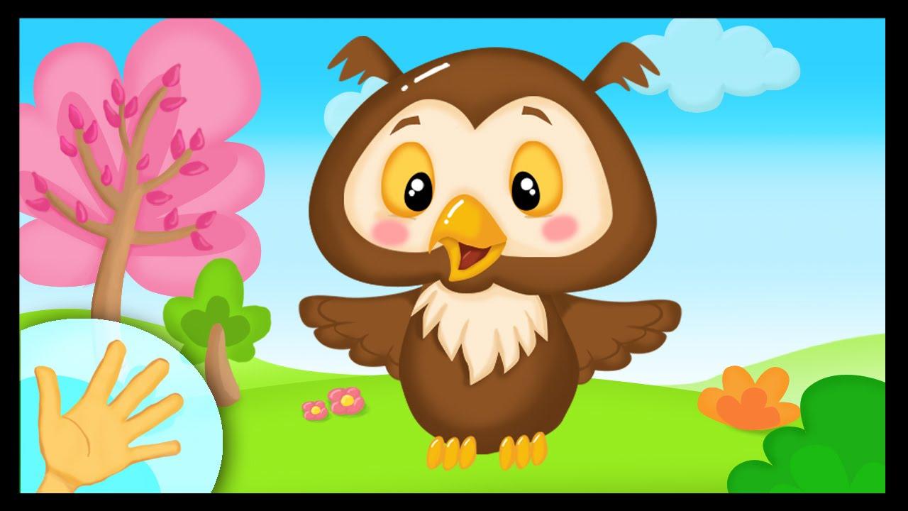 La Comptinette Du Hibou - Comptine À Gestes Pour Bébés pour Coucou Hibou Chanson
