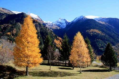 Le Parc National Des Ecrins destiné Parc Des Ecrins