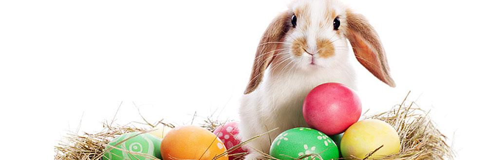 Légendes De Pâques : Pourquoi Des Oeufs, Des Cloches Et intérieur Origine Lapin De Pâques