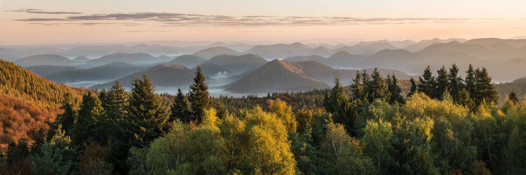 Les Vosges Du Nord Depuis Le Belvédère Du Grand avec Les Nounous Du Nord