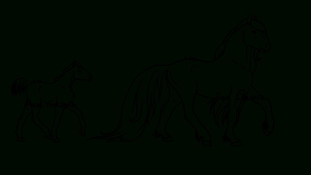 Lineart / Coloriage Cheval - Scotis.fr concernant Coloriage Cheval