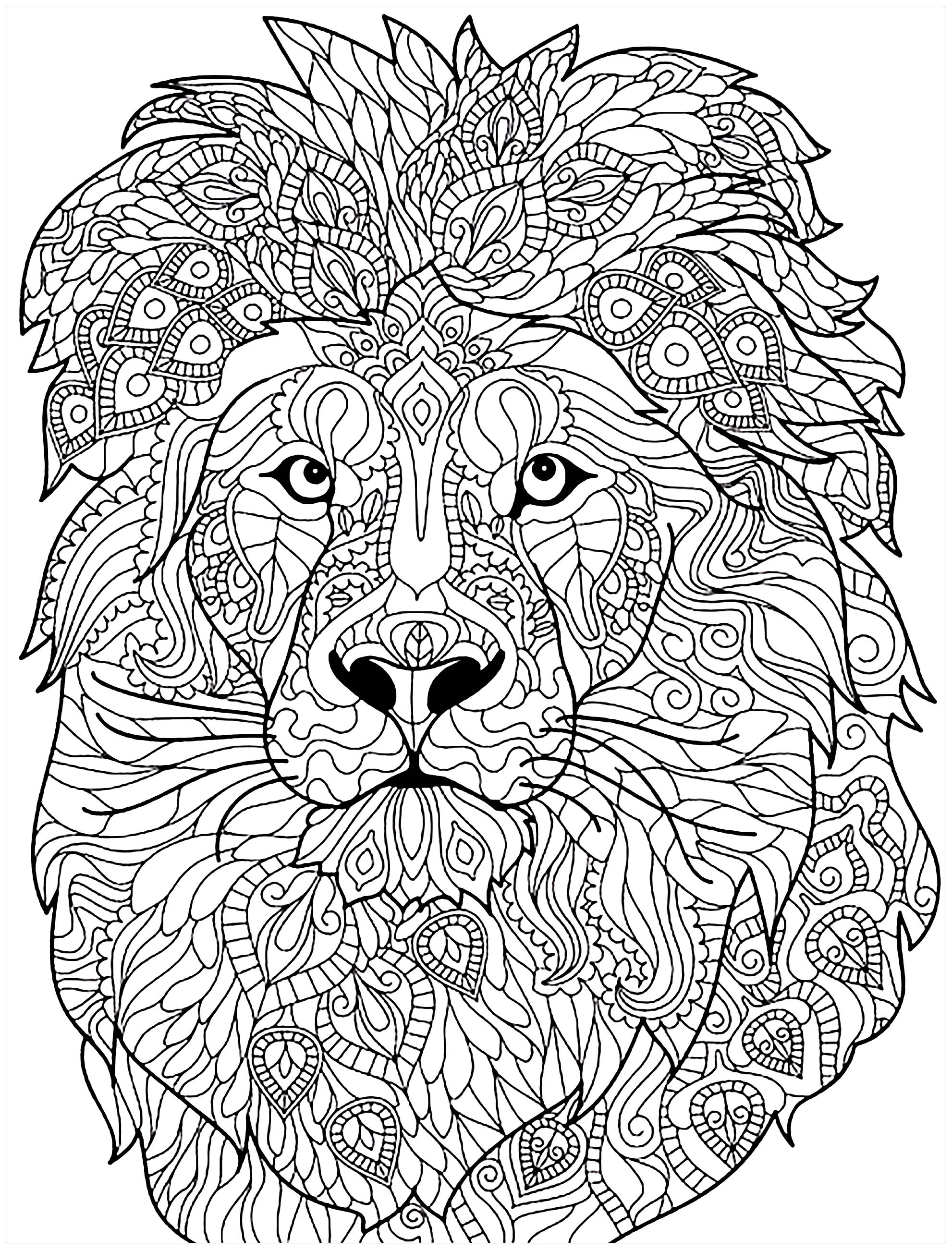 Lion Complex Patterns - Lions Adult Coloring Pages à Coloriage Pour Adulte