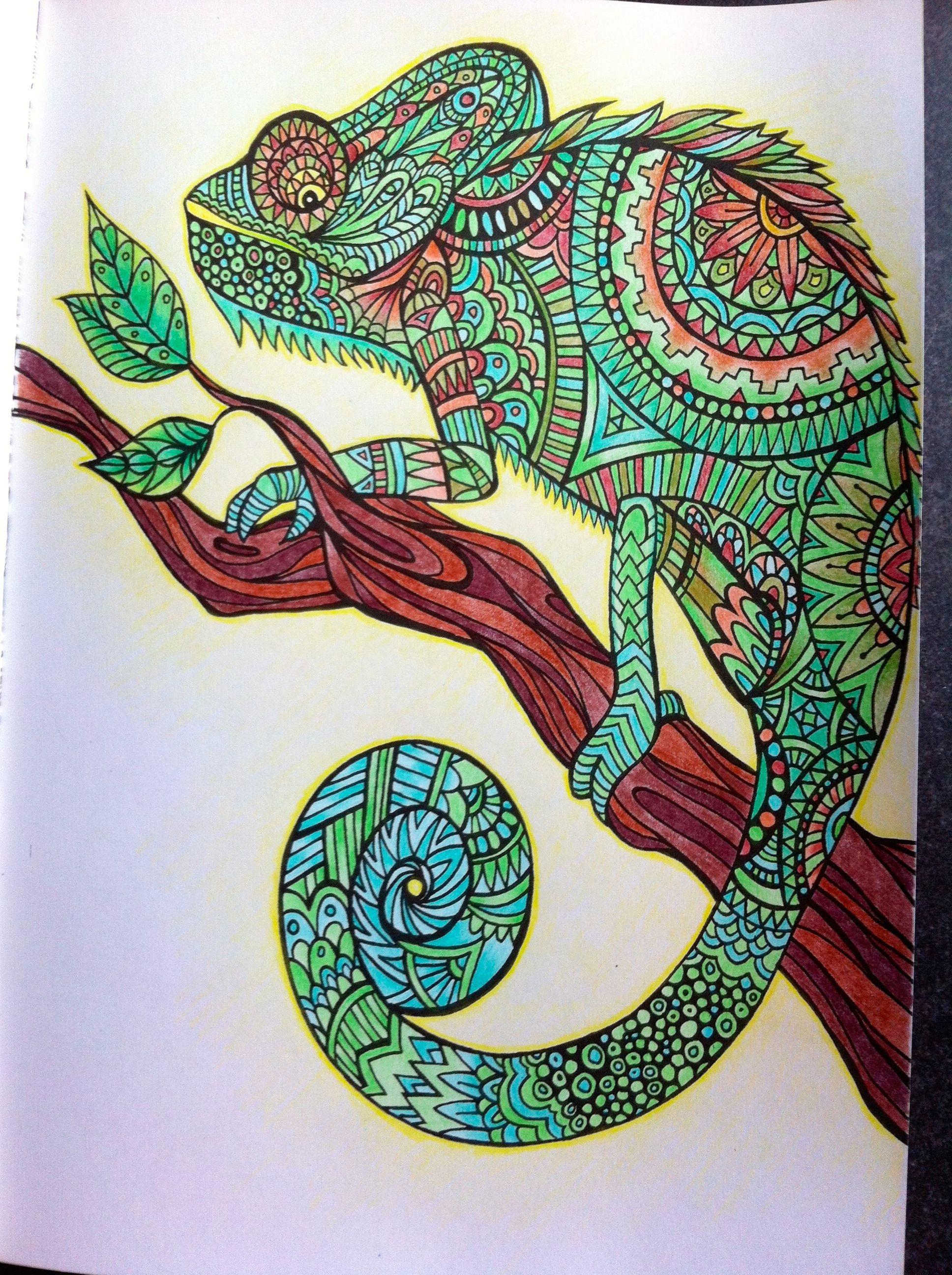 """Livre """"Bestiaire Extraordinaire"""" - Crayons De Couleurs intérieur Des Coloriage"""