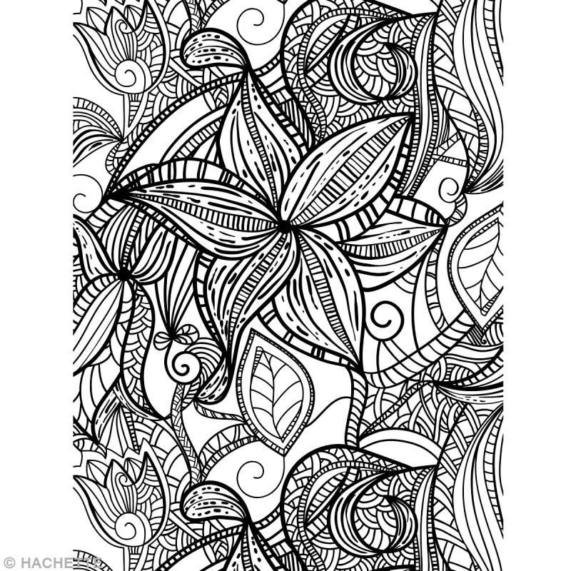 Livre Coloriage Adulte Anti-Stress - A4 - 100 Coloriages dedans Coloriage Adultes À Imprimer