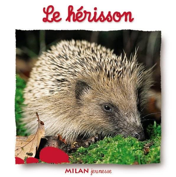 Livre: Le Hérisson, Natacha Scheidhauer-Fradin, Milan, Le dedans Le Hérisson Chanson