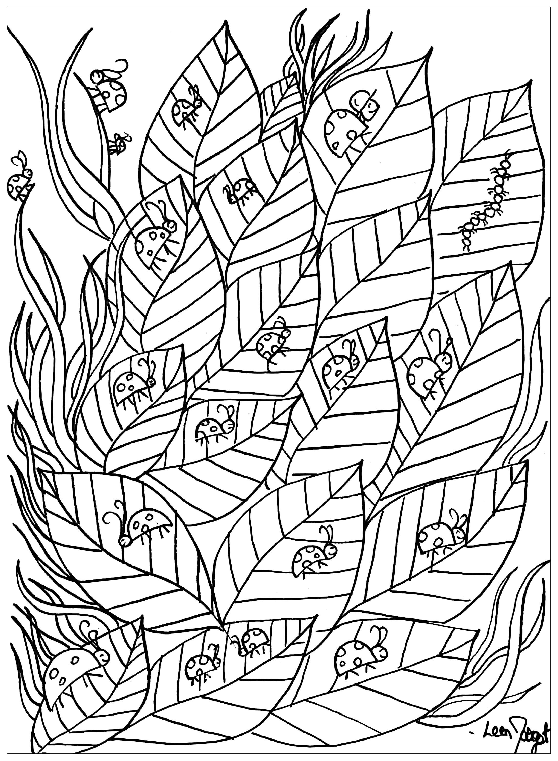 Luxe Image De Coccinelle A Colorier – Mademoiselleosaki encequiconcerne Coccinelle À Colorier