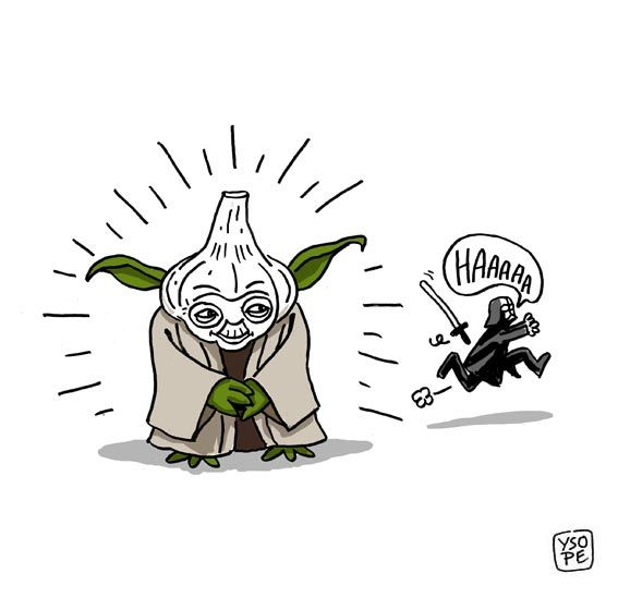 Maître Yoda | Dessin Humour, Maitre Yoda Et Dessin De Presse pour Maitre Yoda Dessin