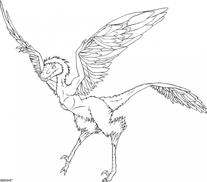 Microraptor Coloring Pages | Dinosaurs Pictures And Facts intérieur Coloriage Dinosaure Raptor