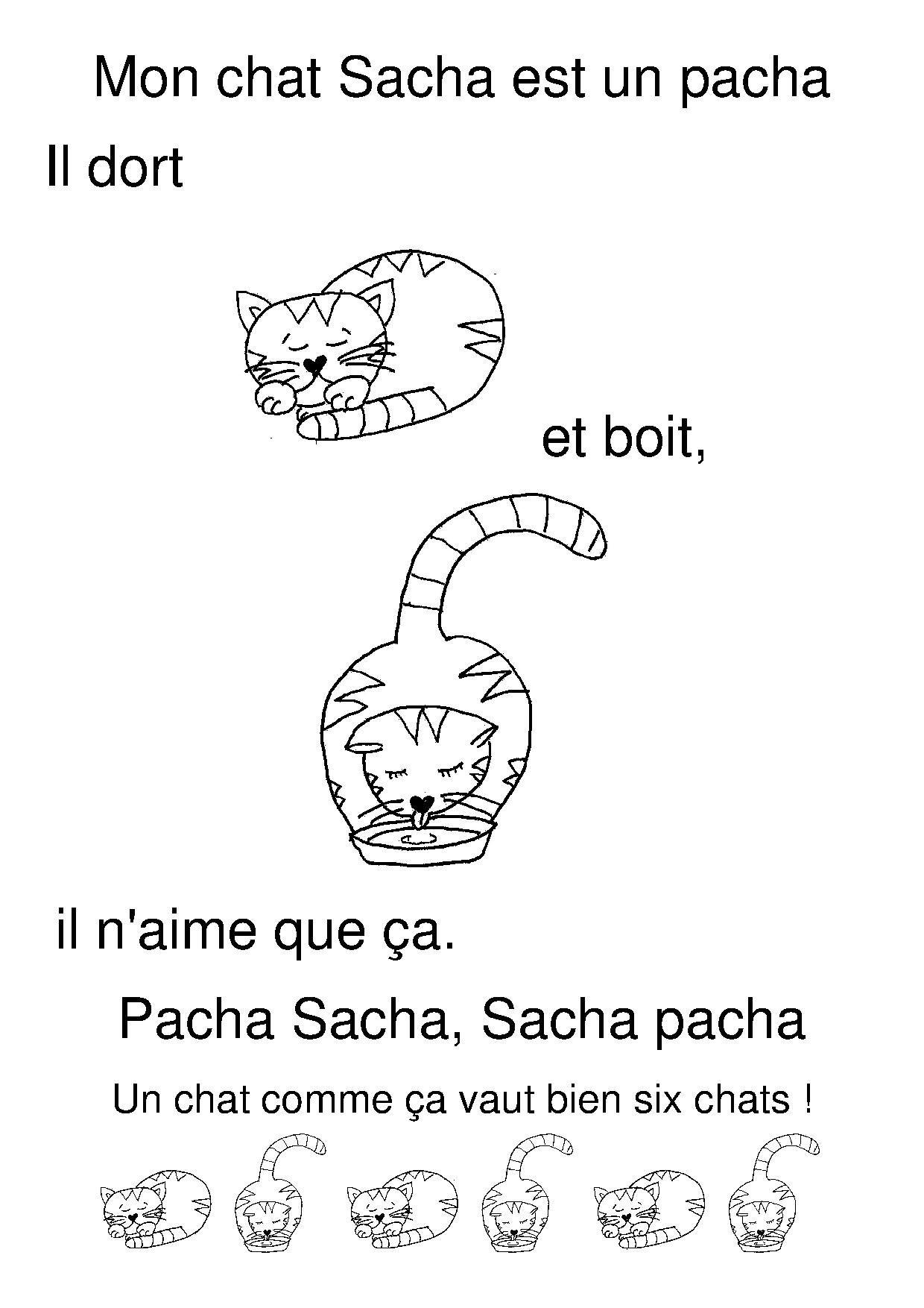 Mon Chat Sacha | Chat Maternelle, 3 Petit Chat Et Comptines destiné Parole Chanson 3 Petit Chat
