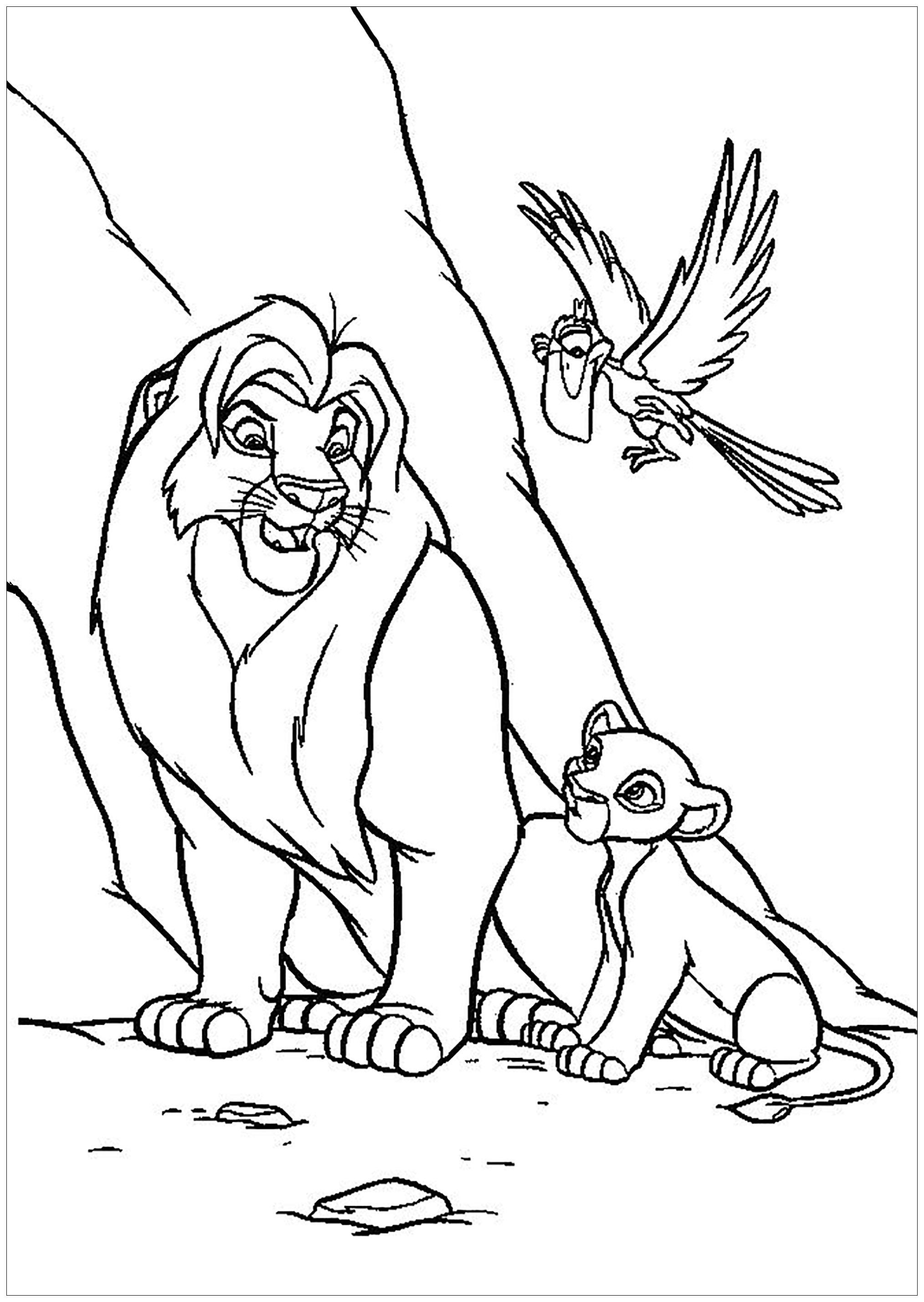 Mufasa Et Simba, Avec Zazu - Coloriage Le Roi Lion tout Lion Dessin Enfant