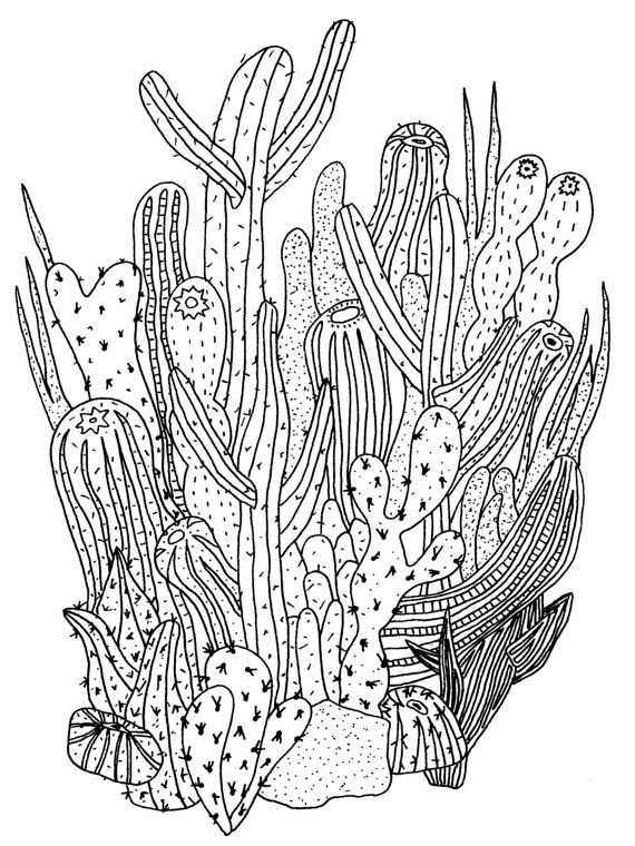 My Love Of Everything Cactus And/Or Succulent Is So, So serapportantà Coloriage Cactus A Imprimer