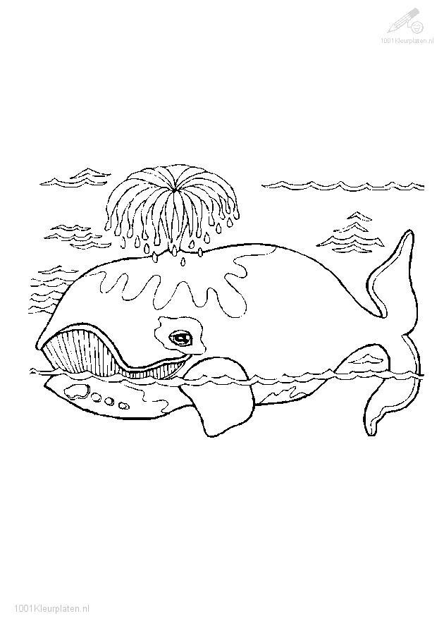 Nos Jeux De Coloriage Baleine À Imprimer Gratuit - Page 6 concernant Coloriage Baleine A Imprimer Gratuit