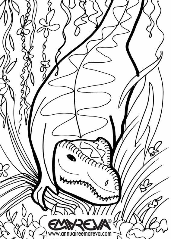 Nos Jeux De Coloriage Dinosaure À Imprimer Gratuit - Page serapportantà Coloriage Dinosaure À Imprimer Gratuit