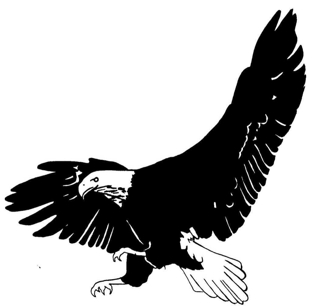Nouveau Coloriage A Imprimer D Aigle | Haut Coloriage Hd avec Coloriage Aigle A Imprimer Gratuit