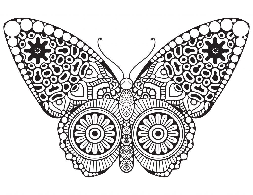 Papillon Butterfly Dessin A Colorier Artherapie avec Dessins Acolorier
