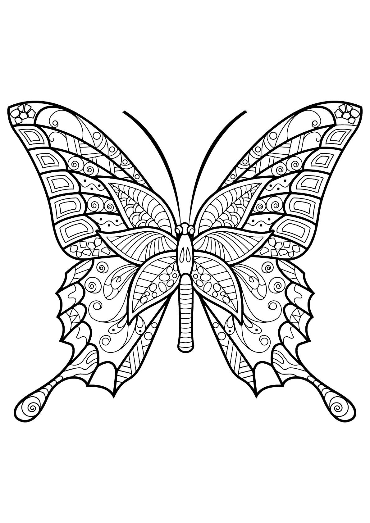 Papillon Jolis Motifs 6 - Papillons & Insectes concernant Coloriage Papillon