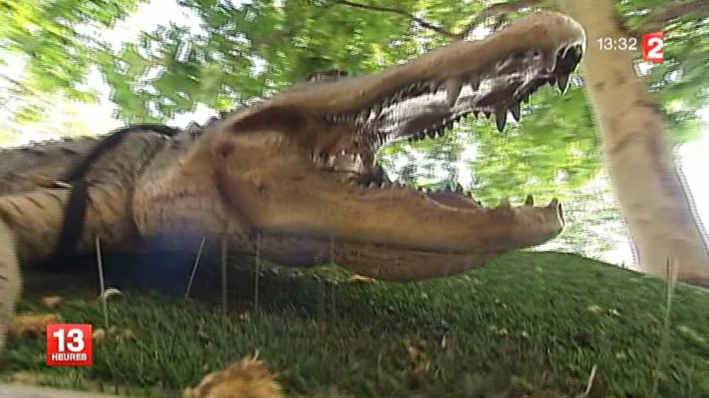 Paris : La Légende Du Crocodile En Replay - 7 Août 2013 encequiconcerne Y Avait Des Gros Crocodiles