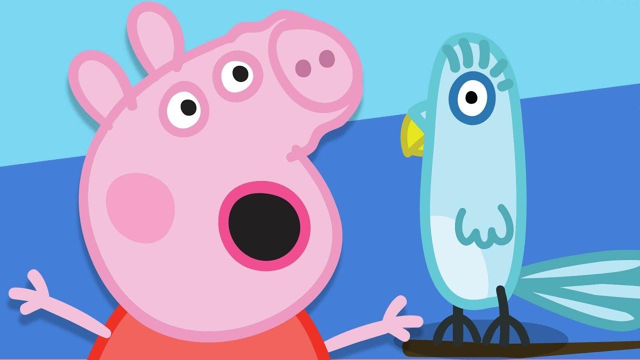 Peppa Pig Français | Amusement Et Jeux Avec Polly intérieur Jeux De Peppa Pig A La Piscine