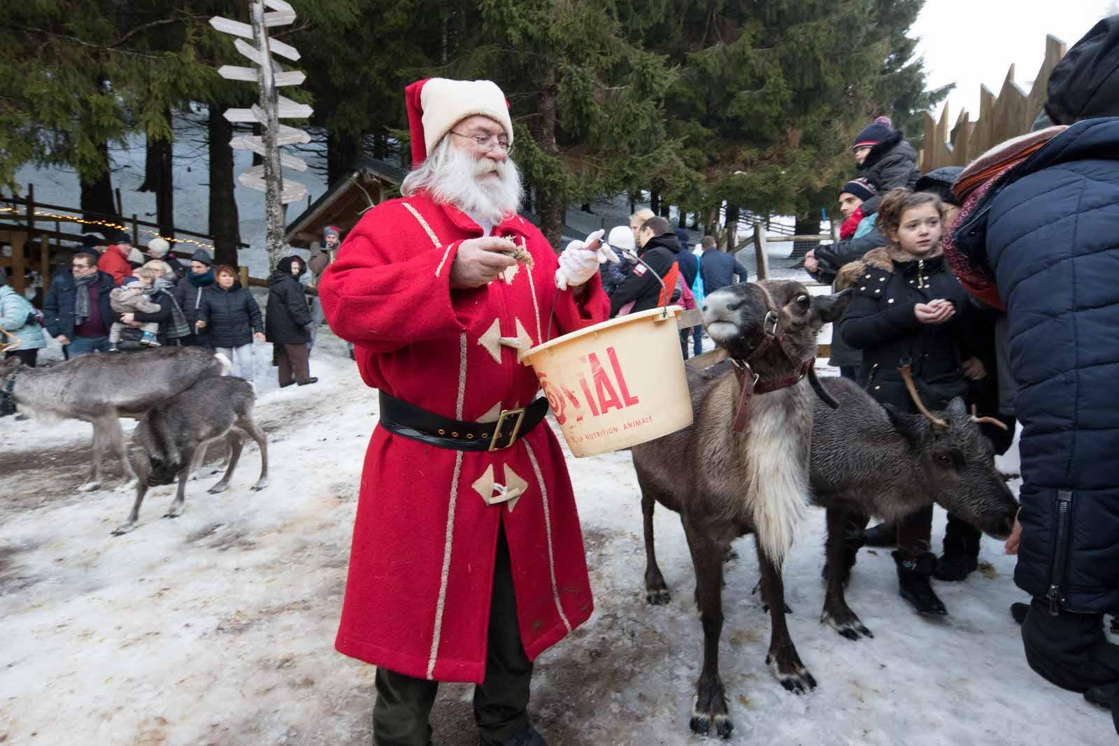 Rencontrez Le Père Noël À La Ferme Aux Rennes Du avec Nom Des Rennes Du Pere Noel
