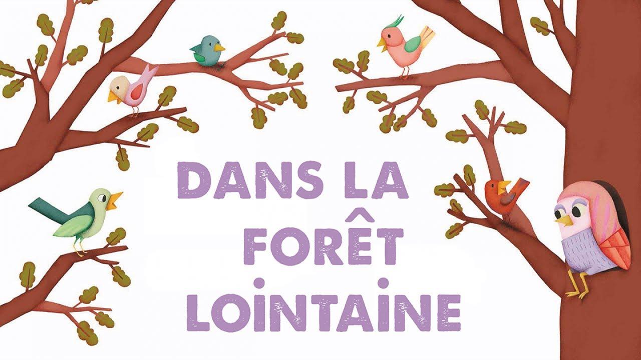 Steve Waring - Dans La Forêt Lointaine - Comptine Pour tout Comptine Coucou Hibou