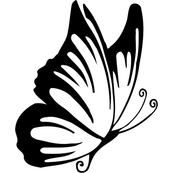 Sticker Papillon Profil encequiconcerne Dessin De Papillon En Couleur